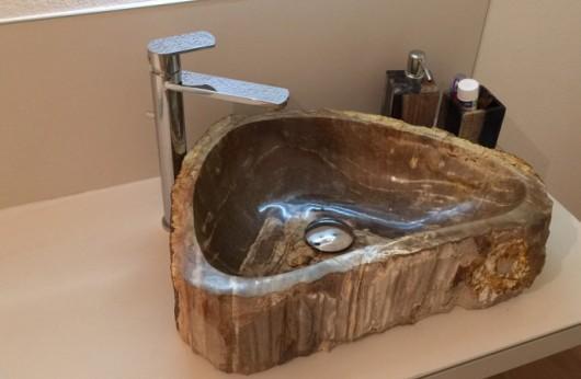 Pezzo unico Lavabo fossile legno