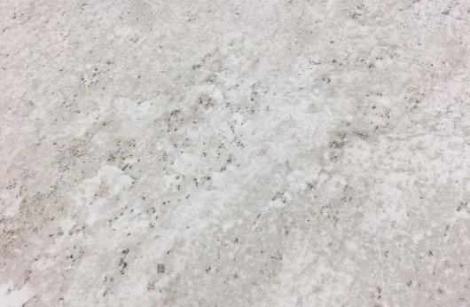 Gres per esterno Terraforte Bianco R11